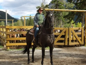 na koni 2